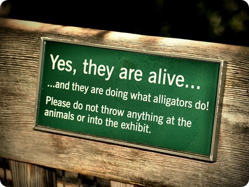 Таблички в зоопарках