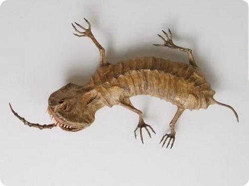 Музей фантастических существ - Япония