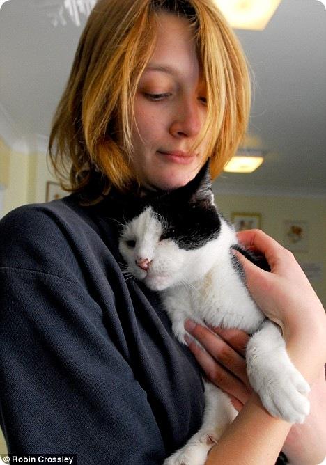 Контактные линзы для кошек