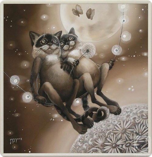 кошки Надежды Соколовой