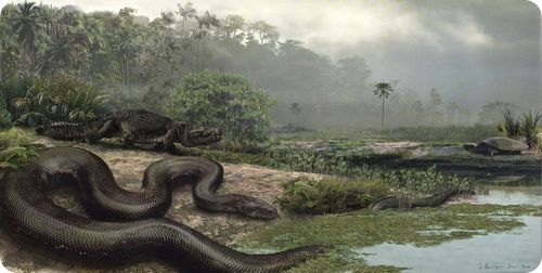 Cамая большая змея