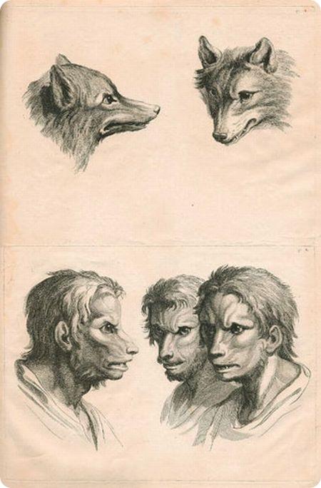 Люди-звери