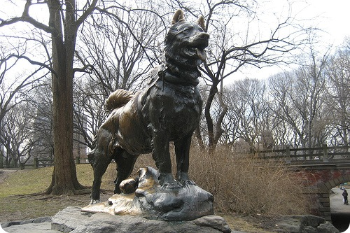 Памятник Балто в Центральном парке Нью Йорка