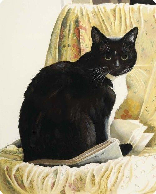Кошки Celia Pike