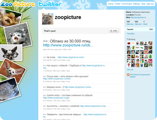 Zoopicture в Twitter