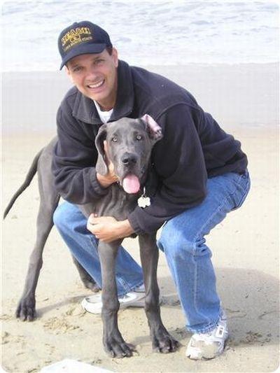 Дог Джордж, самая высокая собака в мире
