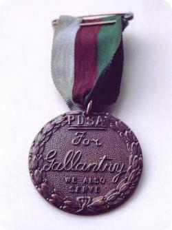 Медаль Марии Дикин – воинская награда для животных