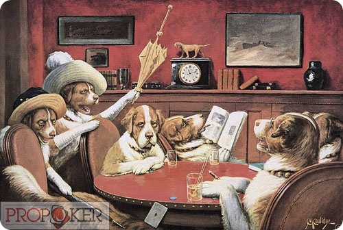 Собачий покер фейс