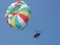 Осел парашютист
