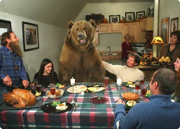 Медведь Брутус и его друг