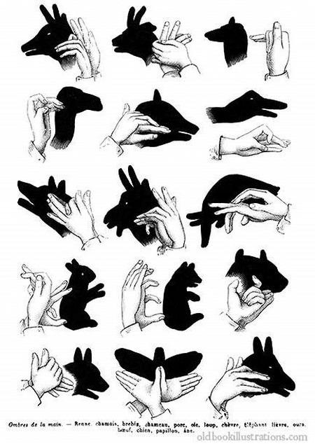 Тени животных руками