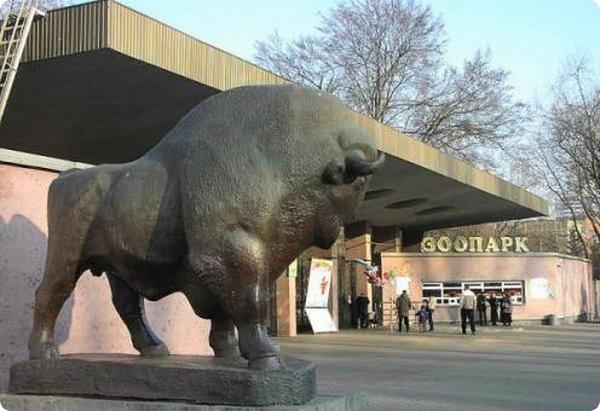 Исчезновение животных из Киевского зоопарка