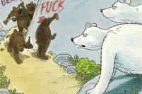 Медвежьи стереотипы