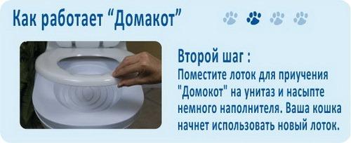 Как приучить кошку к унитазу ? - ДомаКот