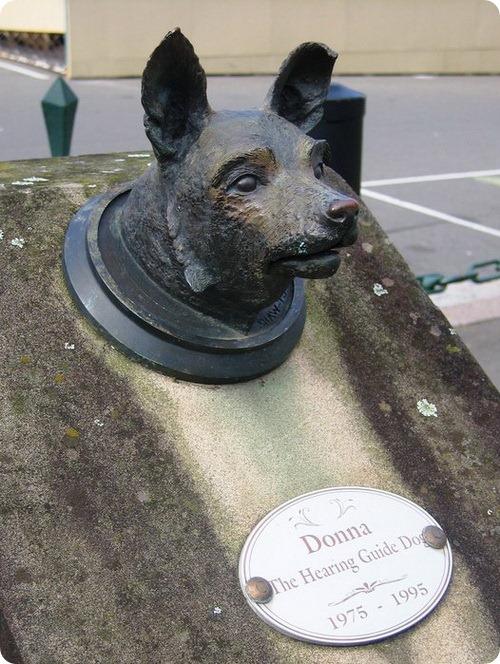 Памятник собаке Донне