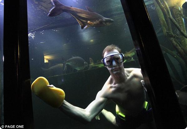 Аквариум в подвале или подвал-аквариум?!