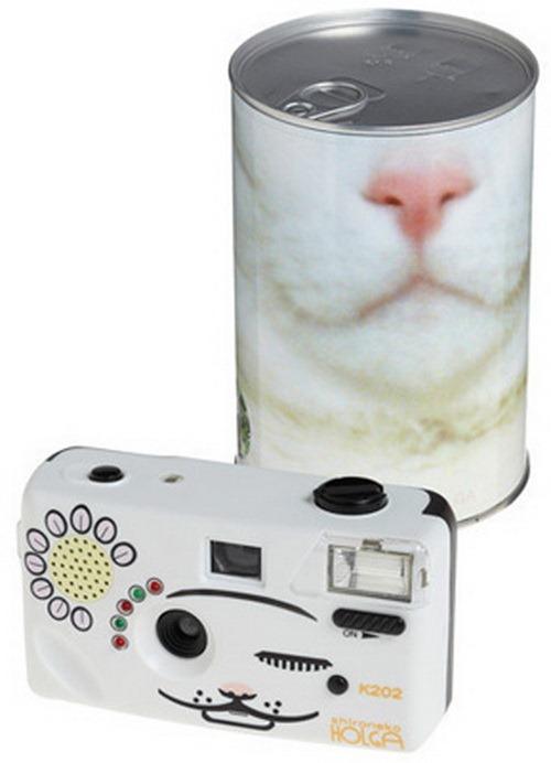 Снимайте кошек камерой Мяу-Пикс