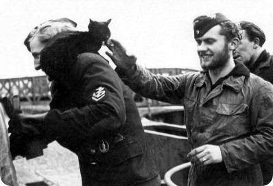 Кот-подводник Петер