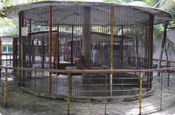 Самый худший зоопарк мира...