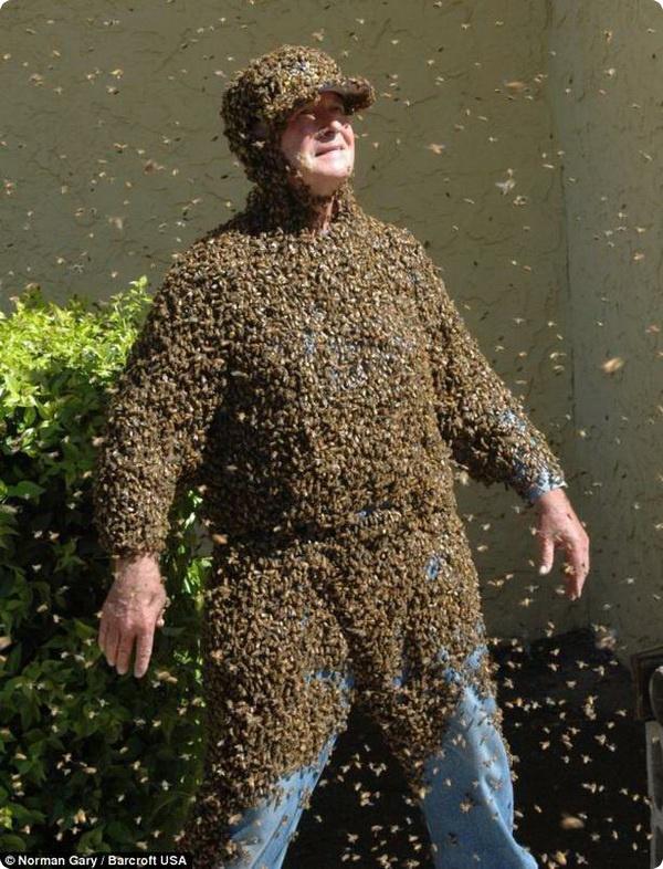 Норман Гэри и его дрессированные пчёлы