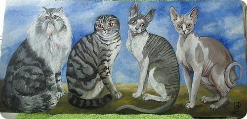 Кошки Ларисы Дюка