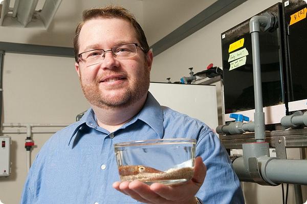 Дружба между кальмаром и светящейся бактерией
