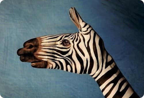 Животные руки