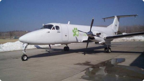 Авиакомпания для животных