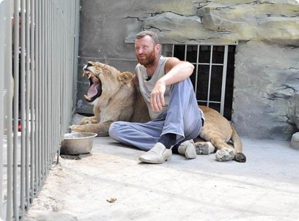 Реалити-шоу: 5 недель в клетке с львицей