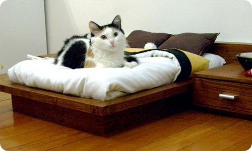 Эксклюзивная спальня для кошек