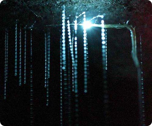 Звездное небо в пещере