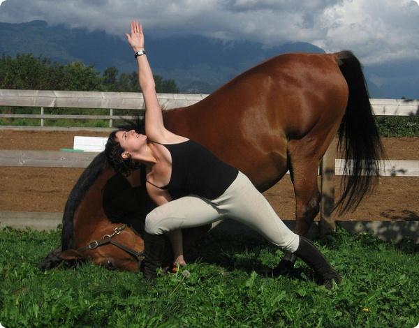 Лошадь йог