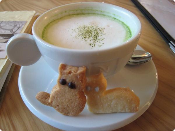 Кошачье кафе «Cat cafe» в Осаке