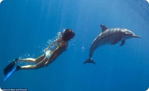 Танцующая с дельфинами