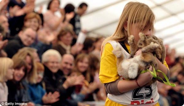 В Швейцарии завершился чемпионат среди кроликов