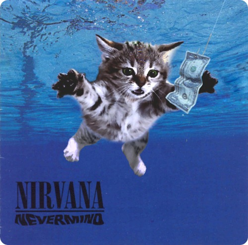 Кошки на обложках