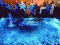 Сверкающие кальмары залива Тояма