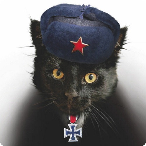 Испытания любимого кота фюрера в Сибири