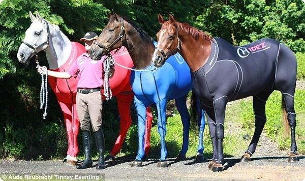 Специальные облегающие костюмы для олимпийских лошадей