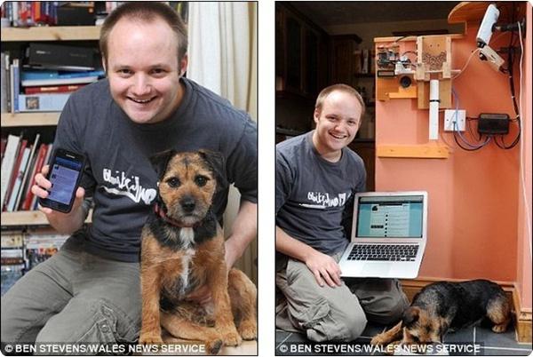Twitter кормушка для собак
