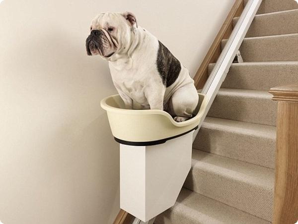 Подъёмник для толстых кошек и собак