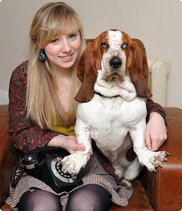 Задыхающийся пёс вовремя вызвал службу спасения