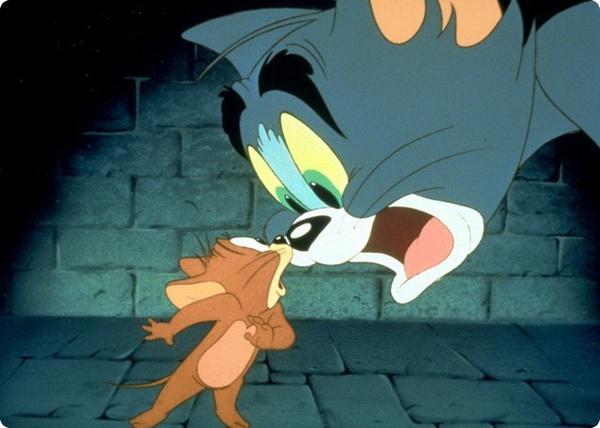 Реальные Том и Джерри
