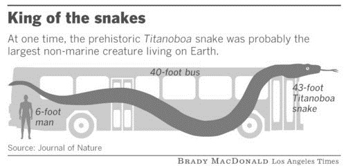 Самая большая змея — Titanoboa
