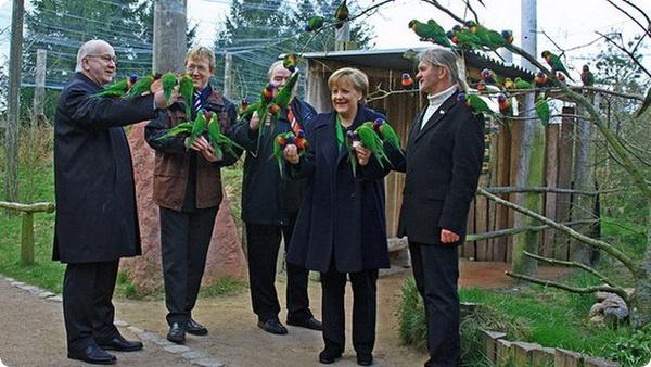 Ангела Меркель в обществе попугаев лори