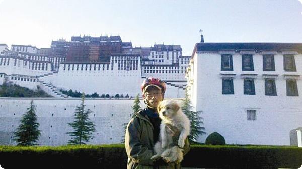 Дворняга из Китая пробежала почти 2 тысячи км!