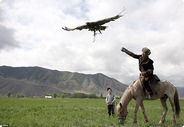 Орлиная охота в Кыргызстане