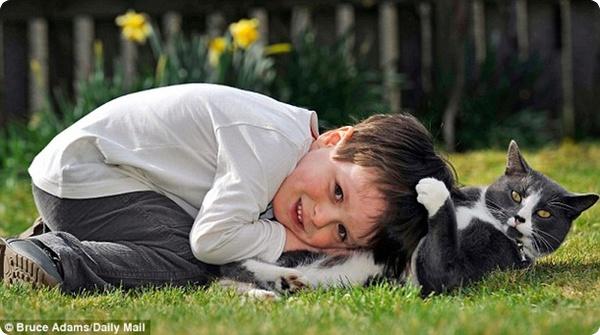 Кот стал лучшим другом мальчика, страдающего аутизмом!