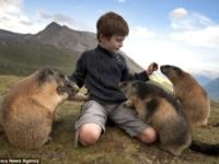 Мальчик и альпийские сурки