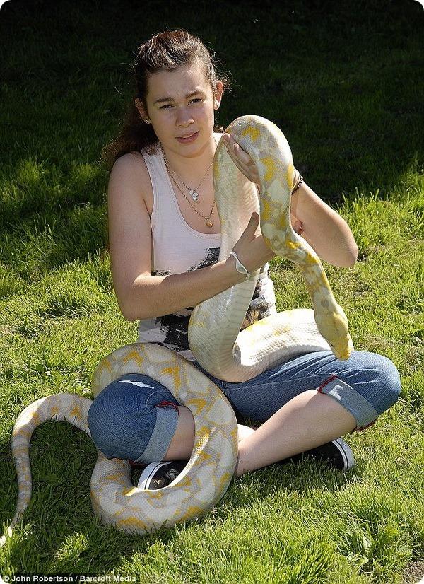 Питон-альбинос живёт под одной крышей с английской семьёй